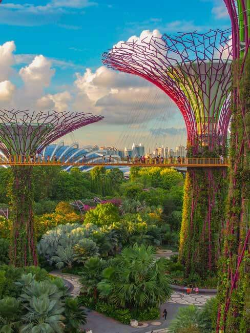 Graden by the bay Singapore, Fortune Connect Holidays tours and travesl, Beautifull Garden